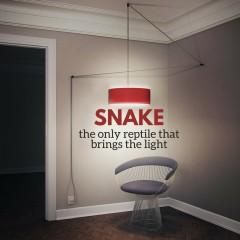 Snake: fiat lux!